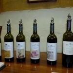 Und das waren nur die Rotweinflaschen, die es zu probieren gab.